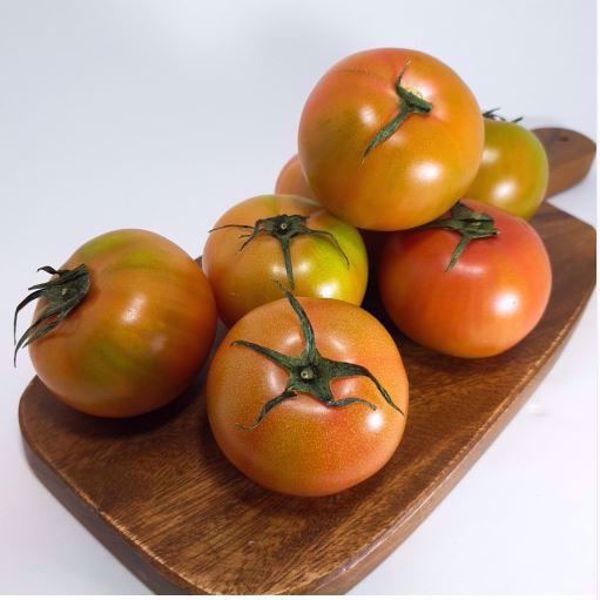 [한국청과] 대저 짭짤이 토마토  2.5kg