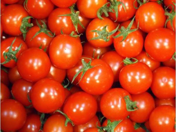 [한국청과] 방울토마토  5kg / 3번